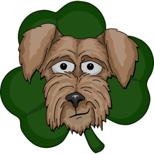 Irish Terrier Kleeblatt