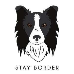 Border Collie - Dark