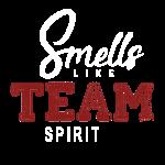 Team Spirit DB2 (2col)