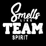 Team Spirit DB1 (mono)