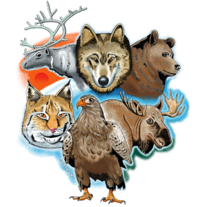 Wolf, Rentier, Bär, Luchs, Adler, Hirsch Textilien