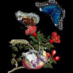 Granaatappel met vlinders