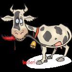Kuh will beissen