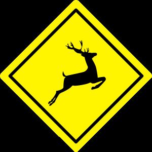 Verkehrszeichen Vorsicht Wild Animals Deer