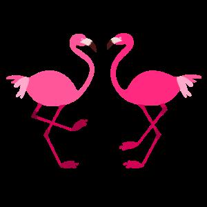 Flamingos voegel rosa tiere