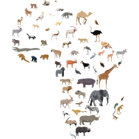 Karte der afrikanischen Tierwelt