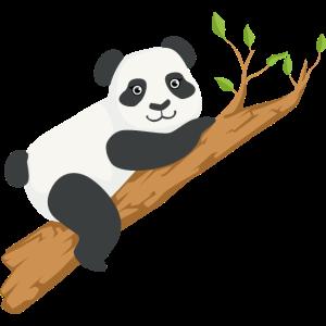 Netter Panda Zweig