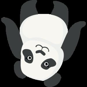 Netter Panda umgedreht