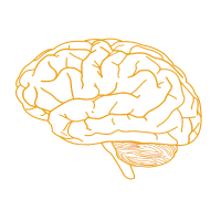 Bodybuilding Unheilbar