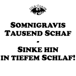 Somnigravis Kissen