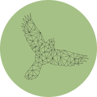 Low-Poly-Vogel