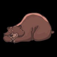 schlafenden Bären