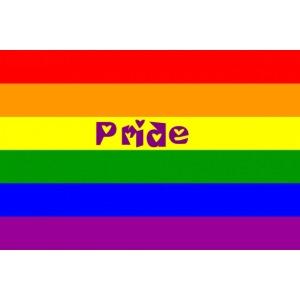 pride accessories