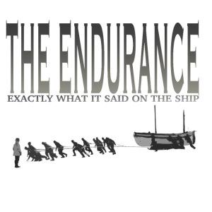 enduranceCUTout.png