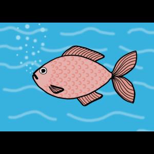 rosa Fisch