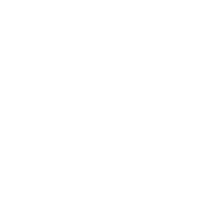 Meister 2017