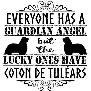 Coton De Tuléar Angels3