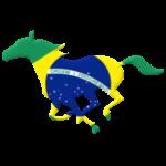 Galoppo Brasile - rilievo