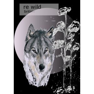 Re wild britain tee shirt