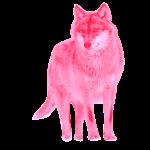wolf wulf alphatier pink
