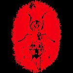 Fluga Red
