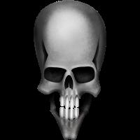 Skull grau