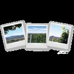 Markgräfler Panoramen