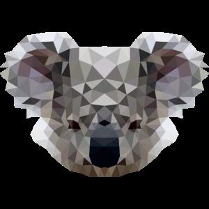 Polygon Koala