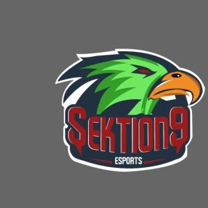 Sektion9 Logo Grün
