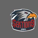 Sektion9 logo Grau