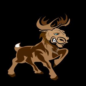 Moose Qué