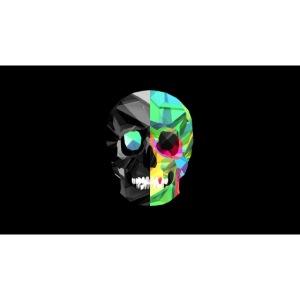 skeleton official logo