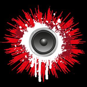 Bass Box Lautsprecher Musik DJ Shirt Geschenk