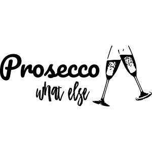 Prosecco what else / Partyshirt / Mädelsabend