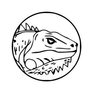 Kaweau