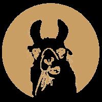 Lama im Kreis