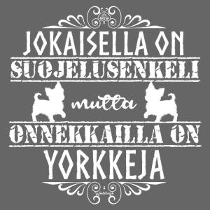 Yorkshirenterrieri Enkeli 7