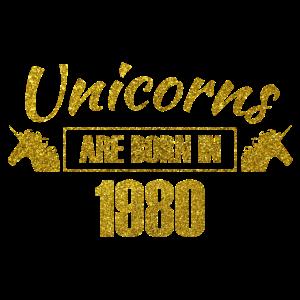 unicorns are born in 1980 - Geburtstag Einhorn