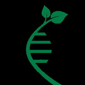 Helix-Pflanze