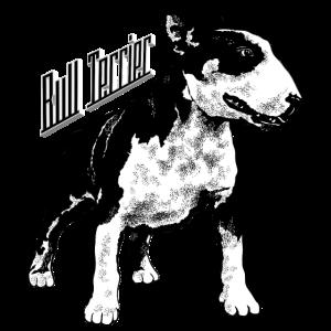 Bull Terrier, Beschützer, Freund des Menschen