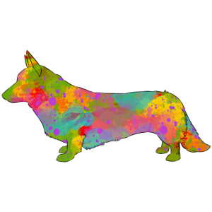 Wolljackenwalisercorgi Multicolor