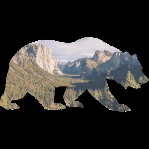 Rocky Mountains Bär