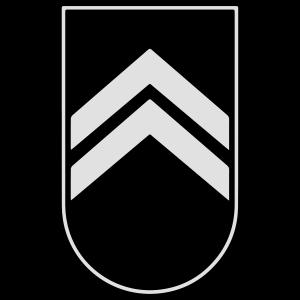 Abzeichen Badge Auszeichnung Armee Army 2c