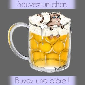 Chat dans la bière