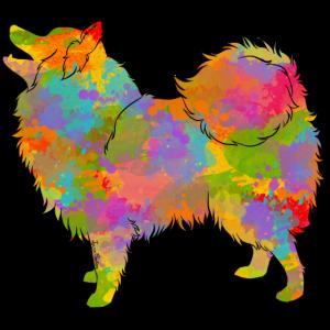 Japanische Spitz Multicolor
