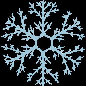 Natürliche Schneeflocke mit vielen Verästelungen