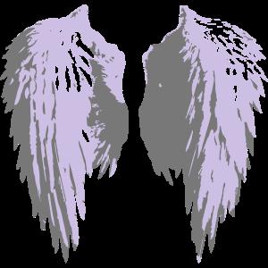 angel_wings