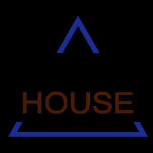 Future House mit Dreieck