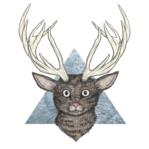 Deer Katze