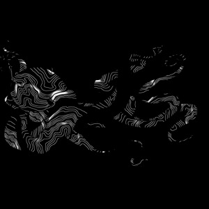 Oktopus Abstrakt weiss